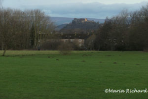 Stirling Castle from Bannockburn