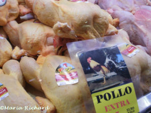 Pollo (chicken)